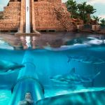 Uma queda vertiginosa de 18 metros parece já suficientemente radical mas esperem até ouvir o resto. Um túnel de acrílico que percorre um lago cheio de tubarões. Assustador? Naaah, nadinha.