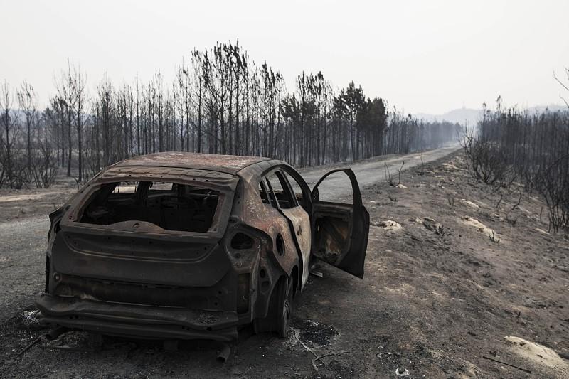 Incêndios: Portugal em risco de catástrofes iguais ou piores a 2017, dizem especialistas