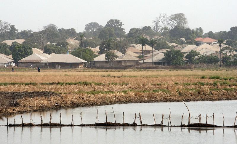 Antigos combatentes da Guiné-Bissau reivindicam melhores condições de vida