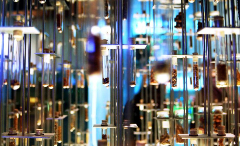 Plataforma Sci-Hub permite o livre acesso ao conhecimento científico