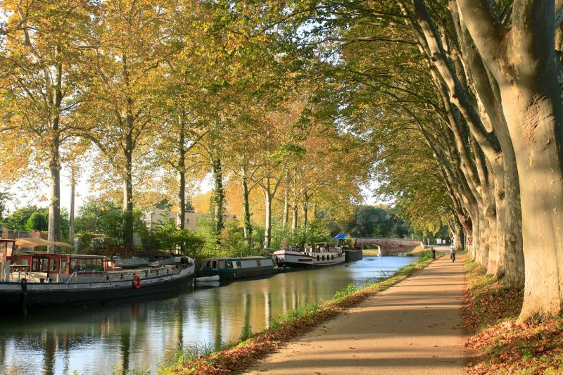 Toulouse: a cidade ideal para uma escapadela de fim de semana