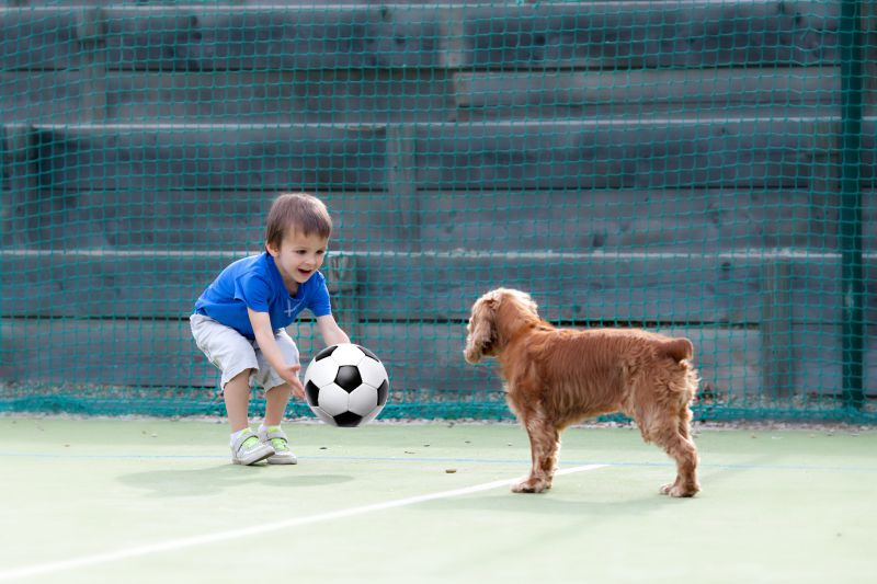 Cute little boy, playing football with his dog on the playground
