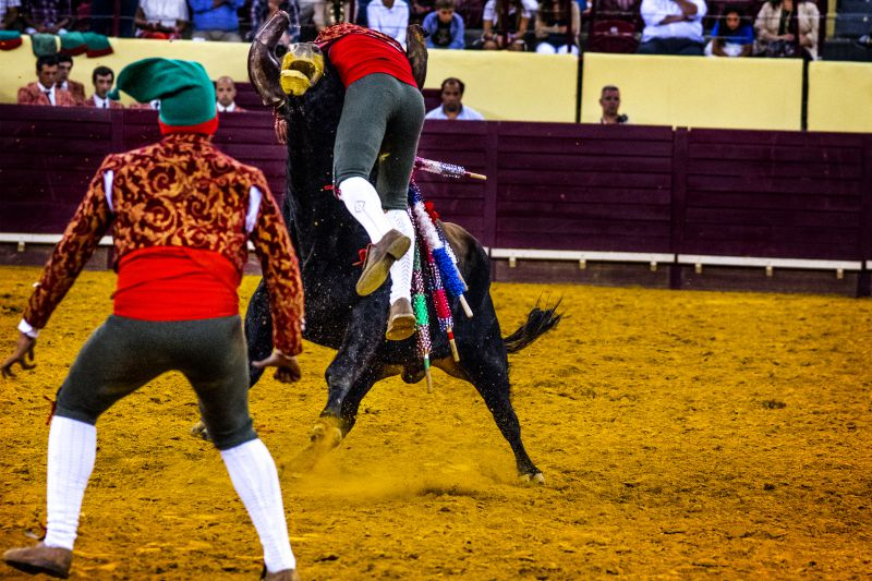 Deputados chumbam projeto do PAN para abolir touradas