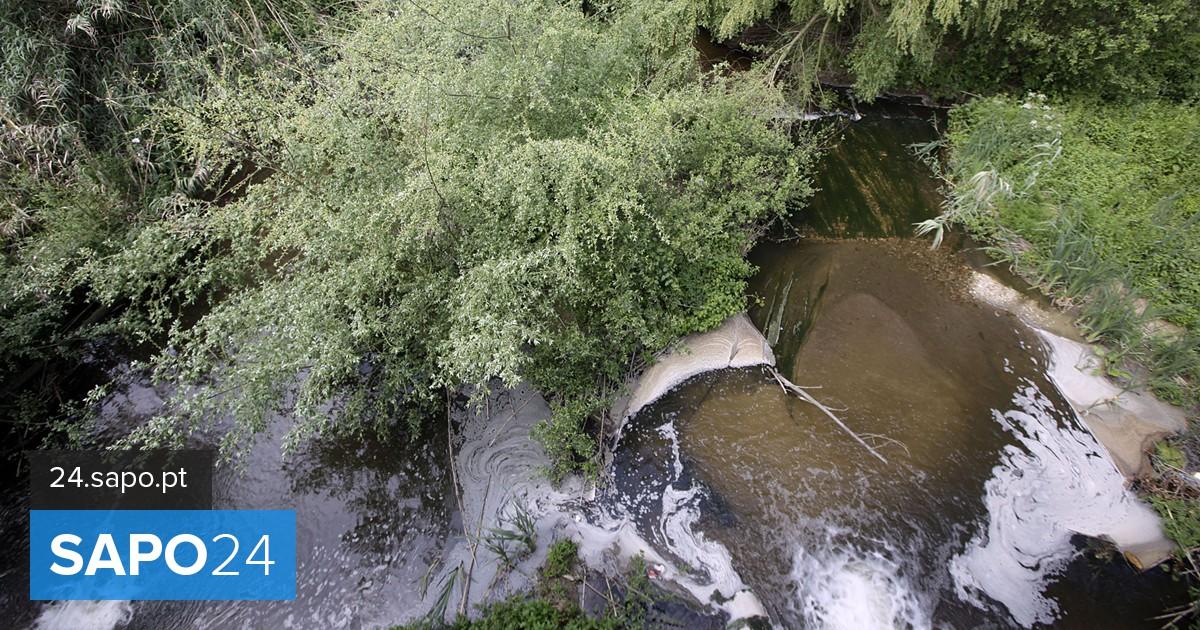Resultado de imagem para Mira recusa que sistema hídrico do concelho seja usado em sobrecarga para efluentes de Cantanhede