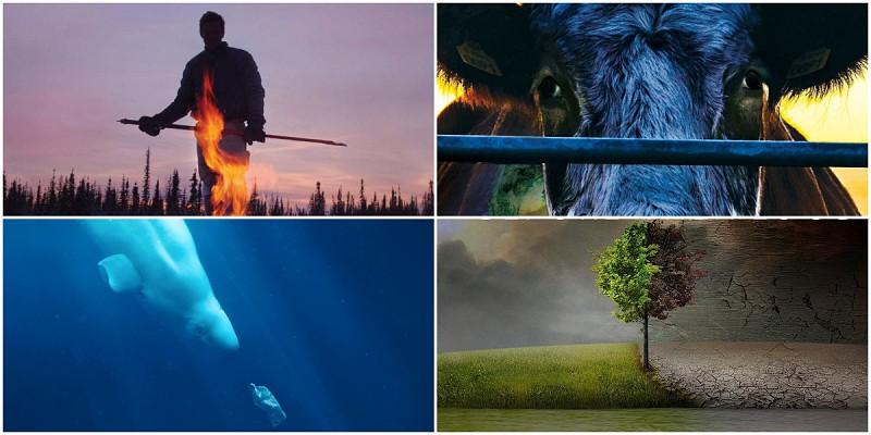12 documentários para refletir sobre o meio ambiente e a humanidade