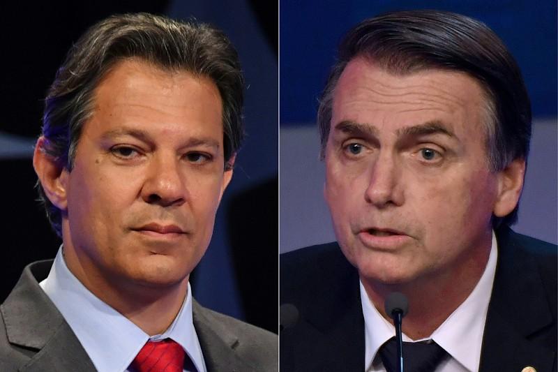 Resultado de imagem para Conheça as propostas de Bolsonaro e Haddad para o meio ambiente – Parte l