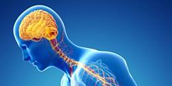 Esteja atento. 8 sinais de alerta da Doença de Parkinson