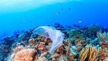 Ilha que inspirou Darwin está a afogar-se no plástico