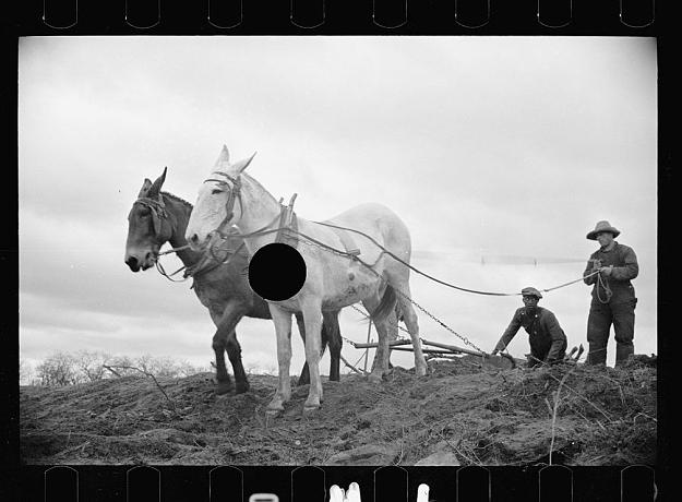 Fotos da Grande Depressão com negativos furados