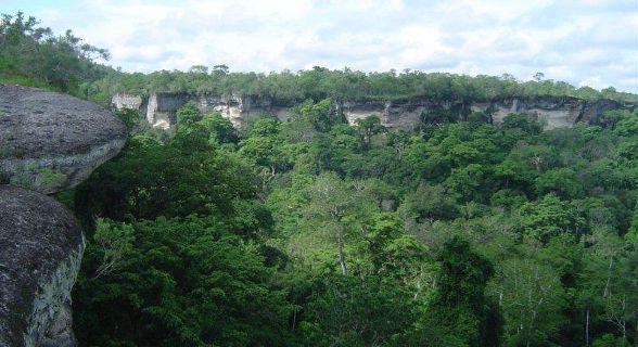 Limestone Gorges