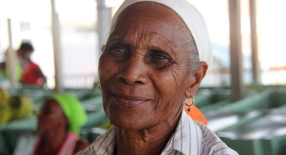 Paula Tavares, 40 anos no mercado do Plateau