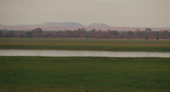 Gorongosa floodplain