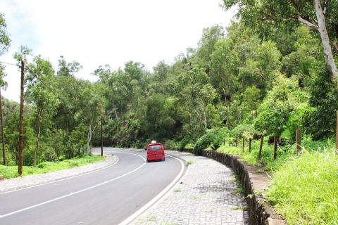 A Serra Malagueta fica completamente verde.