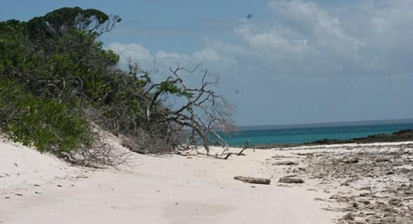 A praia deserta da ilha de Sta. Carolina