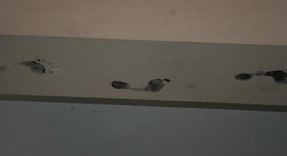 Pés no tecto... Dançariam de cabeça para baixo?