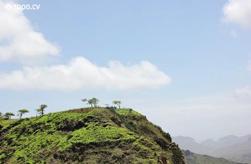 Uma paisagem verde no interior de Santiago.