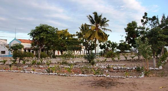 Na ilha do Ibo
