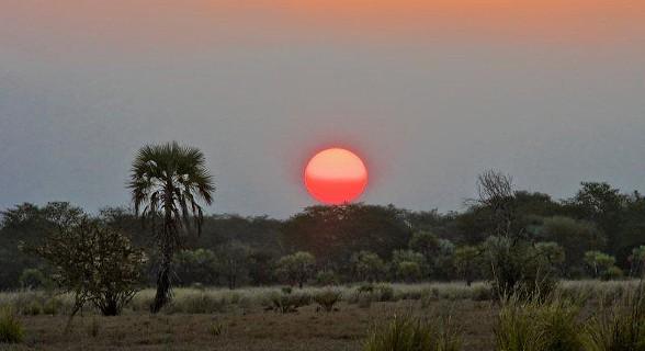 Parque Nacional da Gorongosa