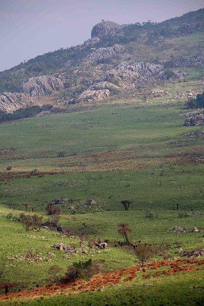 Gorongosa mountain