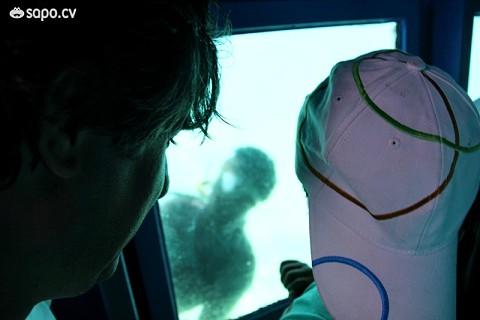 A vista da parte submergível do barco.