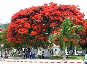 Benguela City Tour