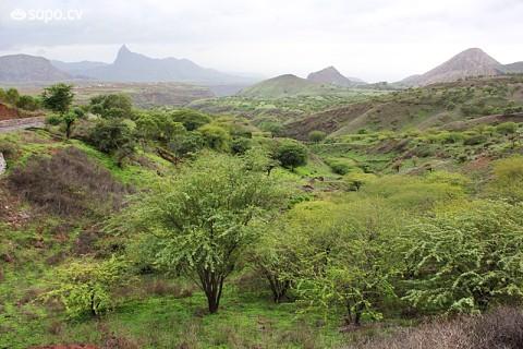 Árvores e montanhas verdes compõem a paisagem.