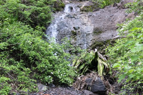 O acesso às cachoeiras é feito a pé.