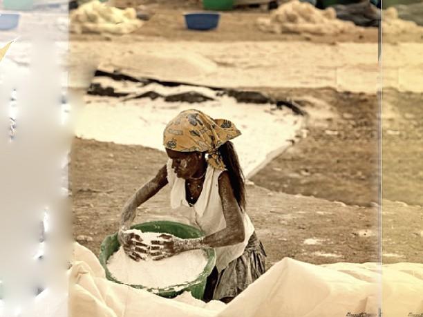 Terceira edição do Vidrul-Fotografia Uma grande campanha de alfabetização artística da foto