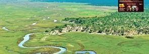 Bacia do Okavango atrai investidores nacionais e estrangeiros