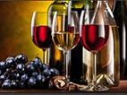 Vinhos Adega Mayor reconhecidos internacionalmente com Ouro e Prata