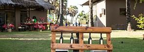 Vinhos Adega Mayor proporcionam momentos de convívio no evento Winenique