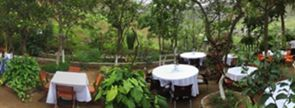 Eco Centro: um espaço pensado para apreciar a natureza