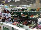 Cerca de 70 expositores participam na VIII feira de produtos agroindustriais