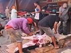 Fogo: Matança de animais acontece ao ritmo dos tambores e cantares das coladeras