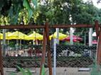 Jardim da Sommershield