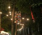 Thumbnail artigo O bosque encantado do Indie Music Fest