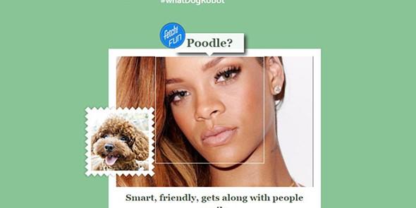 tek que cão seria se fosse um?