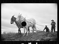 Fotos da Grande Depressão