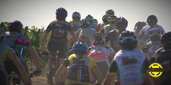 tek tv ciclismo