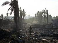 Gaza: Zoo resiste no meio da destruição