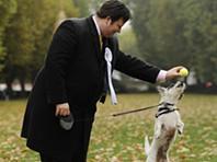 Sou deputado e o meu cão é mais bonito do que o teu