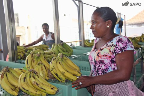 Mulher a vender bananas