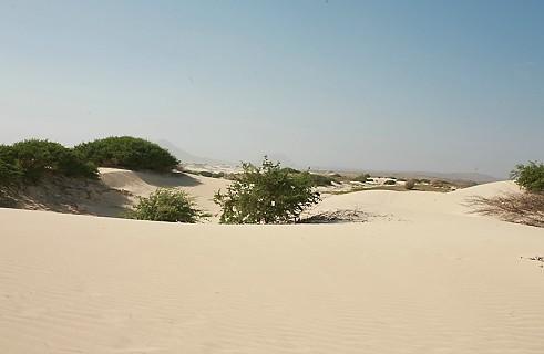 Ilha da Boa Vista