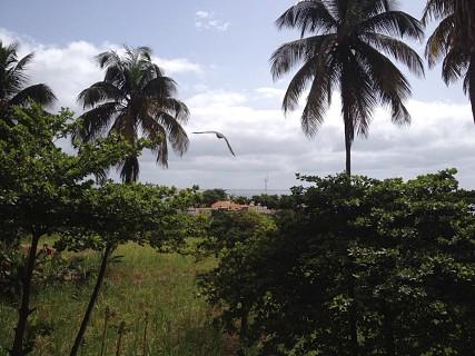 Pombas, Paúl - Santo Antão