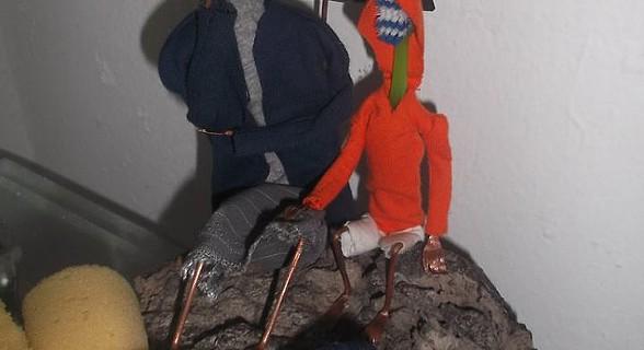 Arte com escova de dentes - Deslocados do vulcão