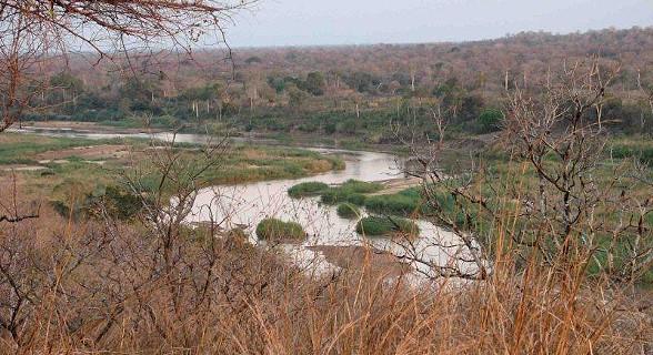 Punguè River