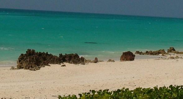 É assim a cor da água do mar