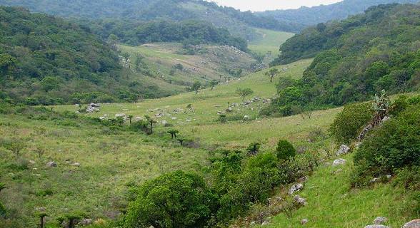 Valley looking north