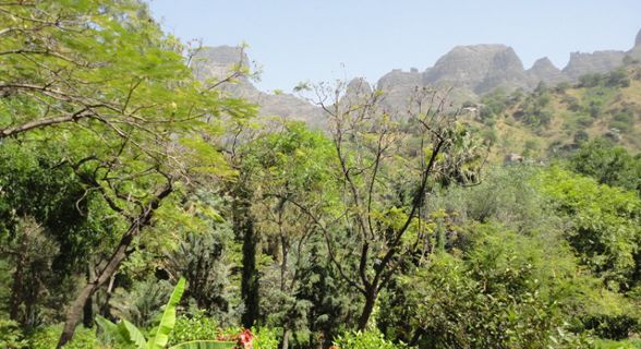 Jardim Botânico de Cabo Verde