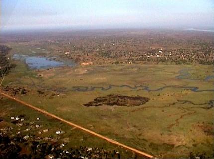 ACTF Limpopo